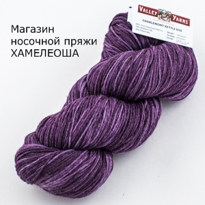 Valley Yarns Charlemont Kettle Dyed Purple Passion-2