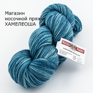 Valley Yarns Charlemont Kettle Dyed Whipple Blue